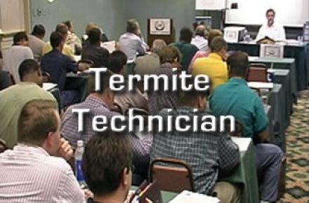 Termite Technician Training Classes